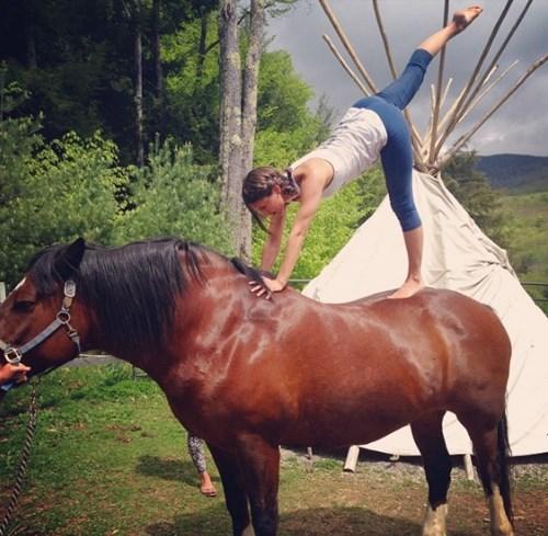Thiếu cảm hứng yoga? Hãy thử 'yoga với động vật'!