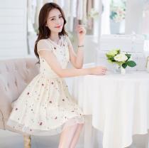 Chân váy đầm xòe đẹp Hàn Quốc trẻ trung cho bạn gái hè 2017